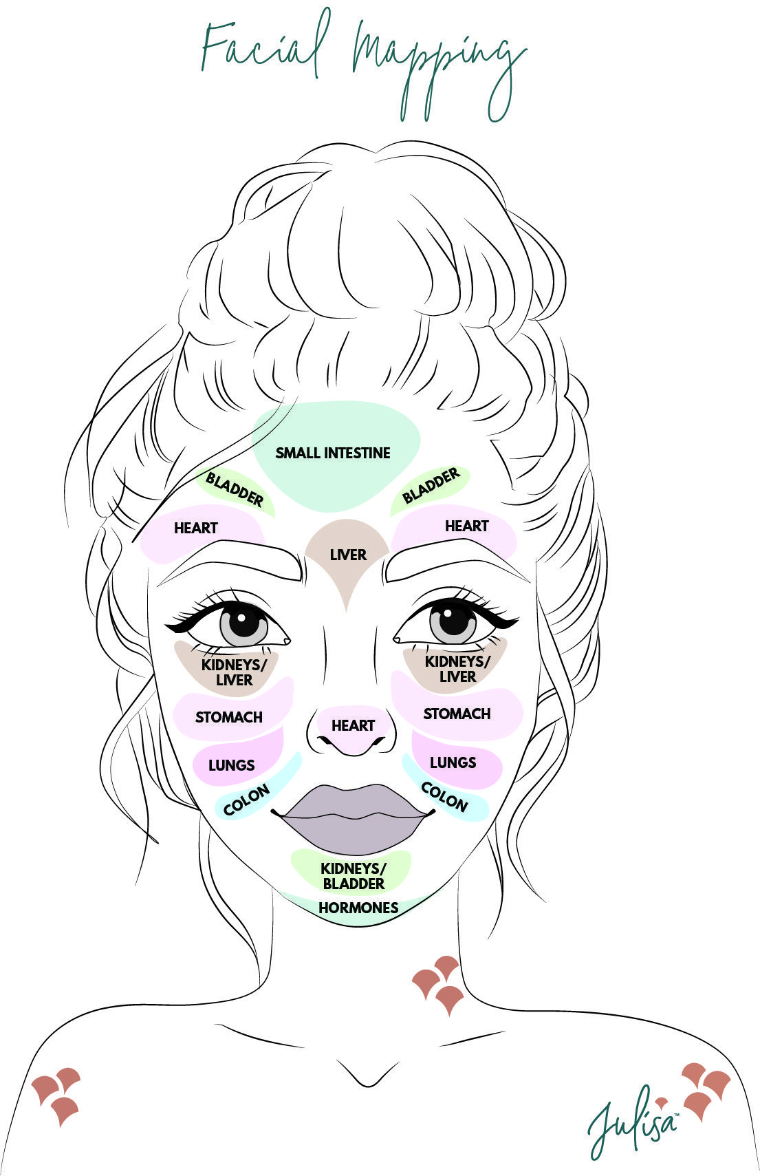 Face Mapping and Facial Relexology   Julisa The Mindful Life Blog